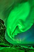 Strand mit Nordlicht und Sternhimmel, Polarlicht, Aurora borealis, Lofoten, Nordland, Norwegen