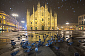 Pigeons in Piazza Duomo during a night snowfall. Milan, Lombardy, Northern Italy, Italy.