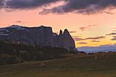 Alpe di Siusi/Seiser Alm, Dolomites, South Tyrol, Italy. Sunset on the Alpe di Siusi / Seiser Alm.