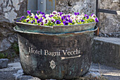 A vase full of flowers at the entrance of a hotel close to the spa of Bagni Vecchi Bormio Upper Valtellina Lombardy Italy