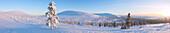 Panoramic of snowy woods around Lapland Hotel Pallas, Pallas-Yllastunturi National Park, Muonio, Lapland, Finland