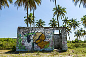 Small abandoned building with graffiti in tropical scenery with palm trees, Boipeba Island, Bahia, Brazil