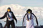 Crew members of an expedition cruise to Antarctica in a Zodiak in Fournier Bay in the Gerlache Strait on the Antarctic peninsula, dressed up as penguins. The Antarctic peninsula is one of the most rapidly warming areas on the planet.