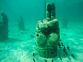 Stone hand is set underwater to attract fish while snorkeling off coast, Cancun, Yucatan Peninsula, Mexico