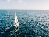 Aerial view of a sailboat in open seas
