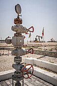 the first oil well opened in the bahrain desert, oil deposit, petroleum business, kingdom of bahrain, persian gulf, middle east