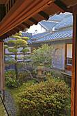 Japan, Kumamoto, Hosokawa Gyobu-tei, samurai residence, garden