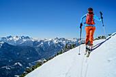 Woman backcountry-skiing ascending towards Zwiesel, Loferer Steinberge range in background, Zwiesel, Chiemgau Alps, Chiemgau, Upper Bavaria, Bavaria, Germany