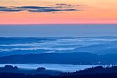 Morning mood with fog in the valley, from Feldberg, Feldberg, Black Forest, Baden-Wuerttemberg, Germany