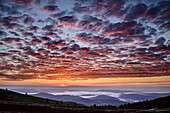 Morning mood with fog in the valley and red glowing clouds, from Feldberg, Feldberg, Black Forest, Baden-Wuerttemberg, Germany