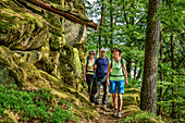 Three persons hiking through forest, Albsteig, Black Forest, Baden-Wuerttemberg, Germany
