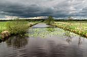 Thunderstorm, Cloud, Ihlowerfehnkanal, Ihlow,  Aurich, East Frisia, Lower Saxony, Germany, Europe