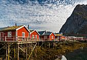 traditionel Rorbuer in the village of Reine, Lofoten Islands, Norway