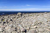 Coast and seaview in Lista, Northern Sea, Vest-Agder, Sorlandet, Southern Norway, Norway, Scandinavia, Northern Europe, Europe