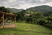 Hacienda Venecia around Manizales, UNESCO World Heritage Coffee Triangle, Departmento Caldas, Colombia, Southamerica