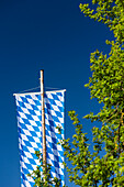 Large Bayer flag with a white-and-blue diamond pattern is a function of the wooden flagpole, in the foreground green branches