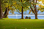 Three elderly people sitting under big trees on a park bench and overlook the lake Chiemsee