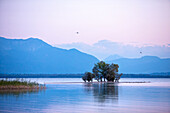 View over the Lake Chiemsee in SCHUT zing with small island and mountain panorama; evening mood in late summer