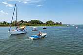 Sailing and electric boats on the Chiemsee in field