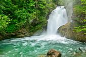 Sum-Wasserfall am Fluss Radovna, Vintgar-Klamm, Radovna-Tal, Julische Alpen, Slowenien