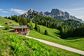 Two alpine huts with rock summits of Reiteralm in background, Berchtesgaden Alps, Salzburg, Austria