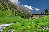 Man and woman hiking through alpine meadow with alpine hut and stream, Giro di Monviso, Monte Viso, Monviso, Cottian Alps, Piedmont, Italy