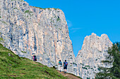 Hikers in front of the Schlern Mountains, Compatsch, Alpe di Siusi, South Tyrol, Italy
