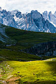 Rosengarten und Schlern Gebirge, Compatsch, Seiser Alm, Südtirol, Italien