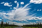 Wolke über dem Alaska Higway, Alaska, USA