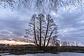 Flusslandschaft zur Winterzeit im Spreewald während es Sonnenaufganges