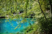 "visitors enjoy the endless blue water of the ""Blautopf"" in Blaubeuren, Alb Danube District, Swabian Alb, Baden-Wuerttemberg, Germany"