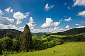 Hilly landscape with meadows and forest, Belchen, Kleines Wiesental, Southern Black Forest, Black Forest, Baden-Württemberg, Germany