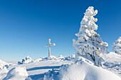 Stark verschneiter Gipfel mit Anraum an Bäumen und Gipfelkreuz, Chiemgauer Alpen, Bayern, Deutschland
