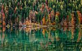 Bootshütte an einem See im Herbst, Spiegelung der Bäume im kristallklaren Wasser, Hintersteiner See, Scheffau, Tirol, Österreich