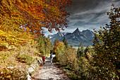 Zwei Bergwanderer auf dem Weg nach Ehrwald , Ehrwald, Alpen, Tirol, Österreich