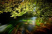 Sriver wuerm, river Wuerm near Leutstetten, bavaria, germany