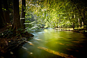 S river wuerm, river Wuerm near Leutstetten, bavaria, germany