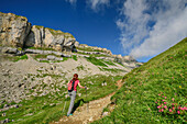 Woman hiking on path through meadow with flowers, Hoher Ifen in background, Hoher Ifen, Allgaeu Alps, valley of Walsertal, Vorarlberg, Austria