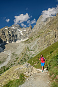 Woman hiking with Pic Coolidge and Barre des Ecrins in background, ascend to hut Refuge Glacier Blanc, Ecrins, National Park Ecrins, Dauphine, Dauphiné, Hautes Alpes, France
