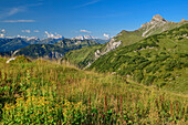 Views of the Lechtal Alps and roggel head, Freiburg, Lech Lodge, lechweg source mountains, Vorarlberg, Austria