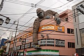 A giant gorilla holding a school girl in its hand is seen over the side of a building of Sangenjaya area on May 30, 2018, Tokyo, Japan. The 'Gorilla Building' (as known) displays a colossal statue figure of a gorilla, on top of a commercial building, keep