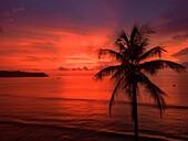 Beach, Corcovado National Park, Osa Peninsula, Costa Rica.