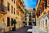 Carrer Uberna near Basilica Santa Maria, historic center of Elche, Elche, Elx, Alicante province, Valencian Community, Costa Blanca, Spain, Europe