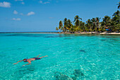 A snorkeler swims in the turquoise colored water off the coast of a small palm-strewn island, San Blas Islands, Panama, Caribbean
