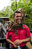 Common squirrel monkeys (Saimiri sciureus) swarm to a park-ranger holding a bag of bananas at Monkey Island, or Isla de los micos, along the Amazon River, near Libertad, Amazonas, Colombia, South America