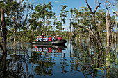 Passengers in a Zodiac from the expedition cruise ship MS Hanseatic (Hapag-Lloyd Cruises) explore a flooded area along the Amazon River, Jutai, Amazonas, Brazil, South America