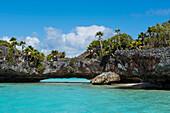 Ein niedriger Steinbogen über türkisfarbenem Wasser, bedeckt von Bäumen und Pflanzen, verbindet zwei Teile einer Insel, Fulaga Island, Lau Group, Fidschi, Südpazifik