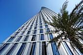Architektur, Hochhaus, Cayan Tower, Dubai Marina, Dubai, VAE, Vereinigte Arabische Emirate