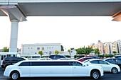 Straße, Autos, Stretch Limosine, Dubai, VAE, Vereinigte Arabische Emirate
