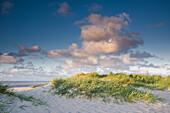 Sanddüne, Strandhafer, Himmel, Wolke, Sonnenlicht, Schillig, Wangerland, Landkreis Friesland, Niedersachsen, Deutschland, Europa